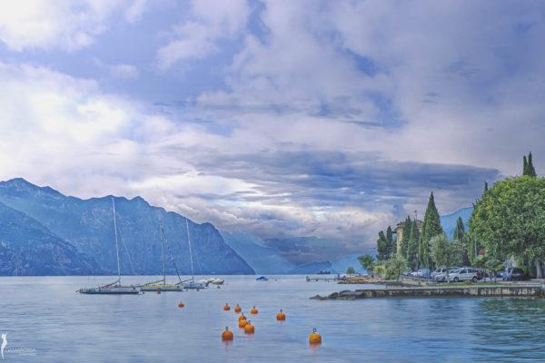 corsorzio-lago-garda-damarossa-14